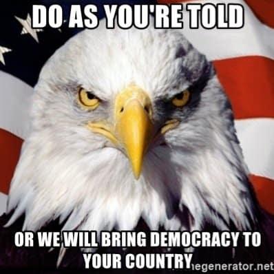 Amerikanischer Adler.jpg