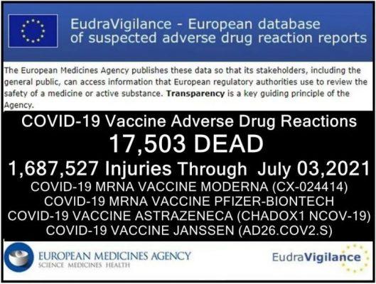 EU Covid Morts a partir de 03 de julho de 2021.jpg