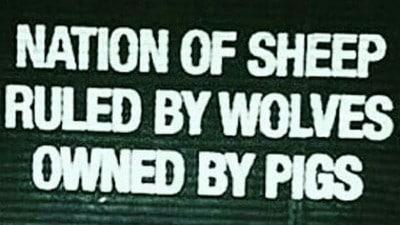 أمة الغنم التي تحكمها الذئاب مملوكة من قبل الخنازير 9454329.png